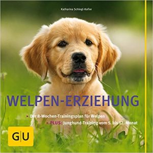 Hunde erziehen Buch Platz 1