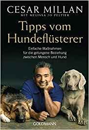 Hunde erziehen Buch Platz 3