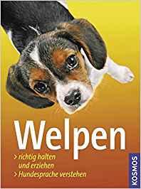 Hunde richtig erziehen Platz 3